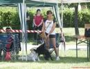 DOG_RUNNING_006