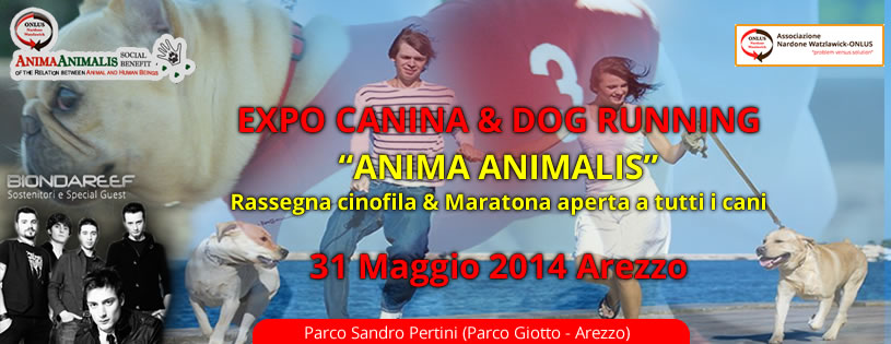 Expo canina & Dog running 2014